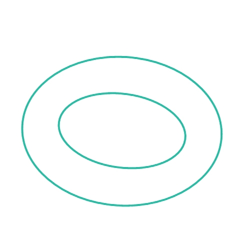 S/S rings
